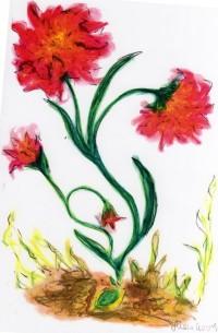Pflanze, Rogers, Selbstaktualisierung, Yshouk Ursula Kirsch